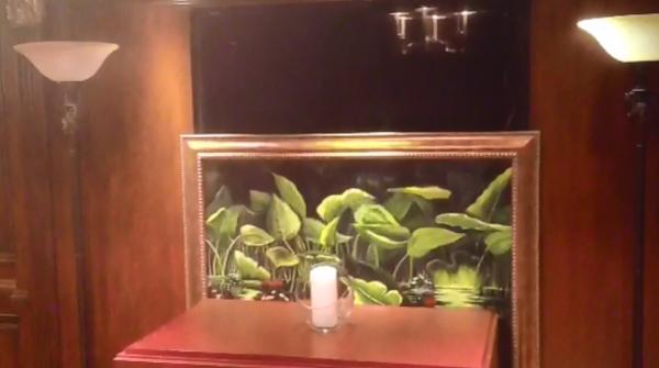 Hidden TV Lift Art